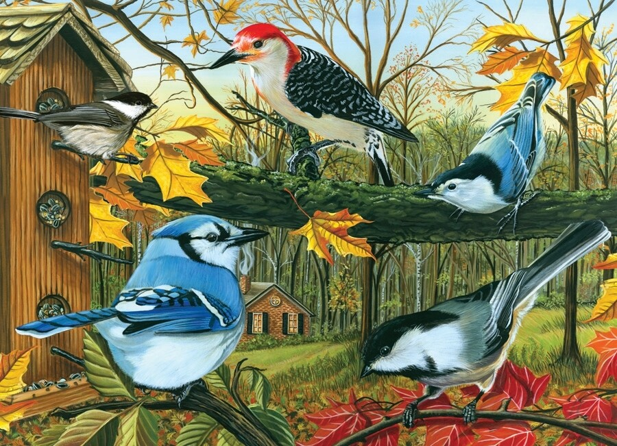 Blue Jay and Friends - 1000 Piece Cobble Hill Puzzle