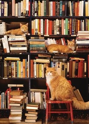 Gotham Bookstore Cats - 500 Piece Cobble Hill Puzzle