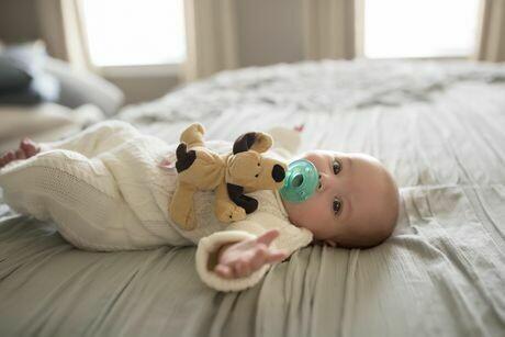 WubbaNub - Brown Puppy - Infant Pacifier