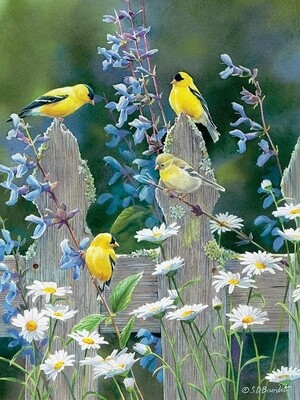 Goldfinch Quartet - 500 Piece Cobble Hill Puzzle