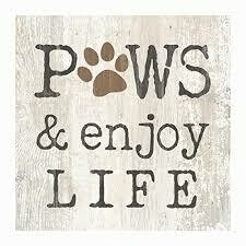 Wood Word Block Sign Small - Paws & Enjoy Life - 3x3 inches - P.G. Dunn