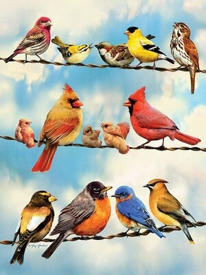 Birds on a Wire - 500 Piece Cobble Hill Puzzle