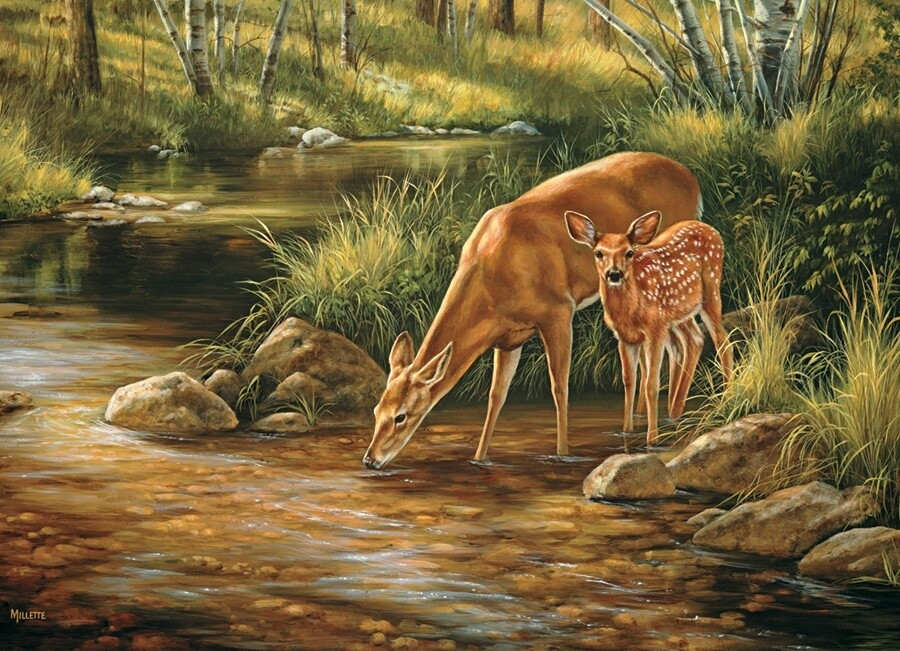 Deer Family - Family Pieces - 350 piece Cobble Hill puzzle