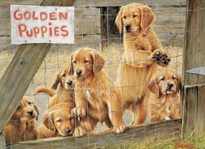Golden Puppies - 500 Piece Cobble Hill Puzzle