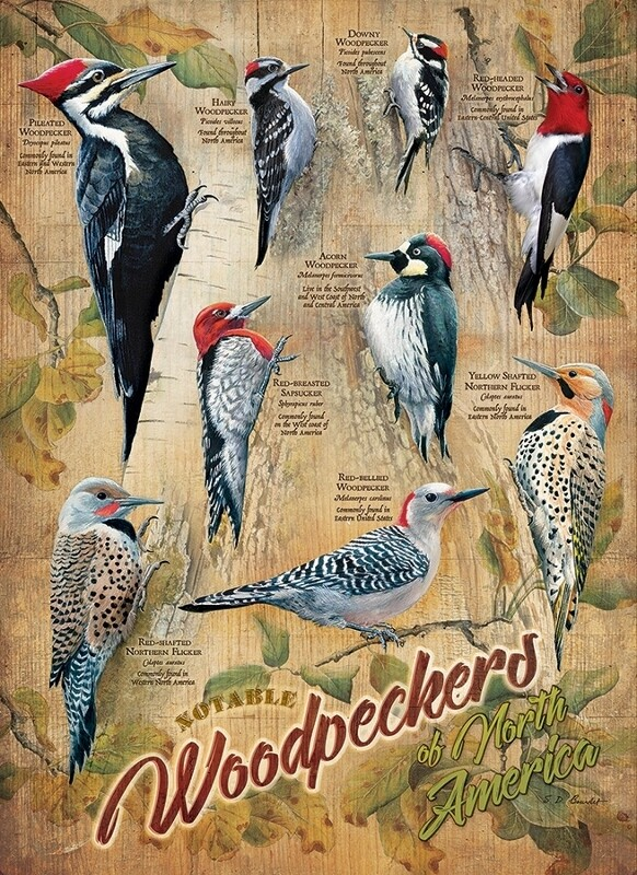 Notable Woodpeckers - 500 Piece Cobble Hill Puzzle