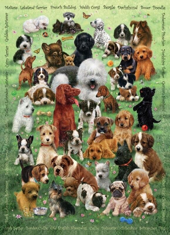 Puppy Love - Family Pieces - 350 piece Cobble Hill Puzzle