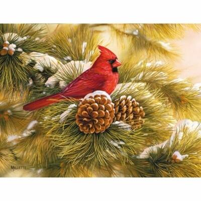 Lang Christmas Cards - December Dawn Cardinal - 18 per Box