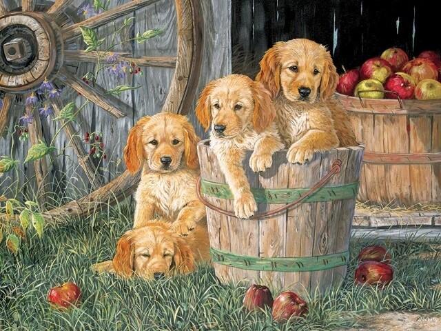 Puppy Pail - Family Pieces - 350 piece Cobble Hill Puzzle