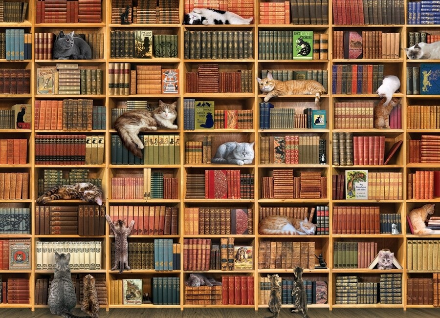 The Cat Library - 1000 Piece Cobble Hill Puzzle