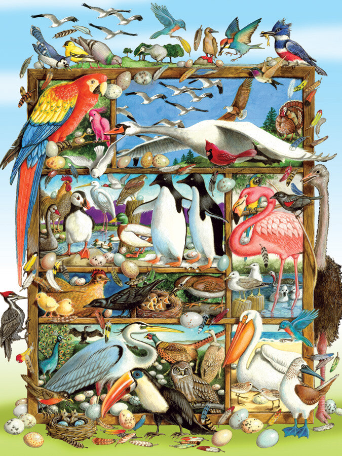 Birds of the World - Family Pieces - 350 Piece Cobble Hill Puzzle