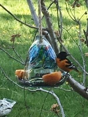 Kitras Art Glass Bird Feeder for Baltimore Orioles, Hummingbirds and others - Dreams - Canadian Hand Blown Glass