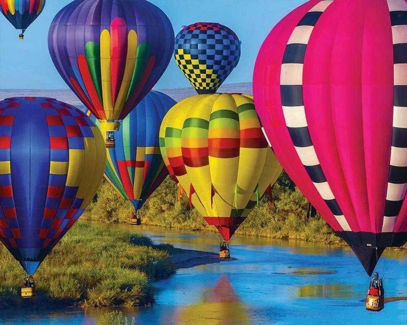 Take Flight - 1000 Piece Springbok Puzzle