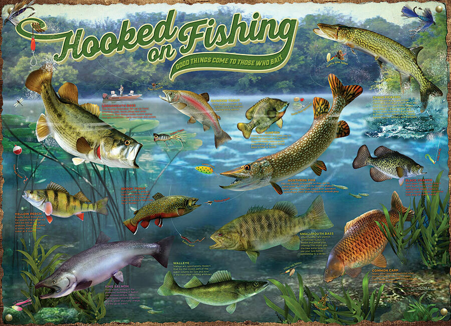 Hooked on Fishing - 1000 Piece Cobble Hill Puzzle