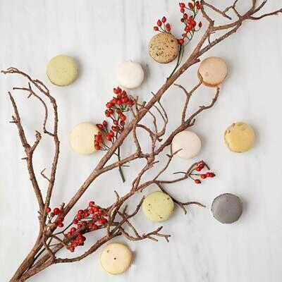 15 Gourmet Sweet Macarons