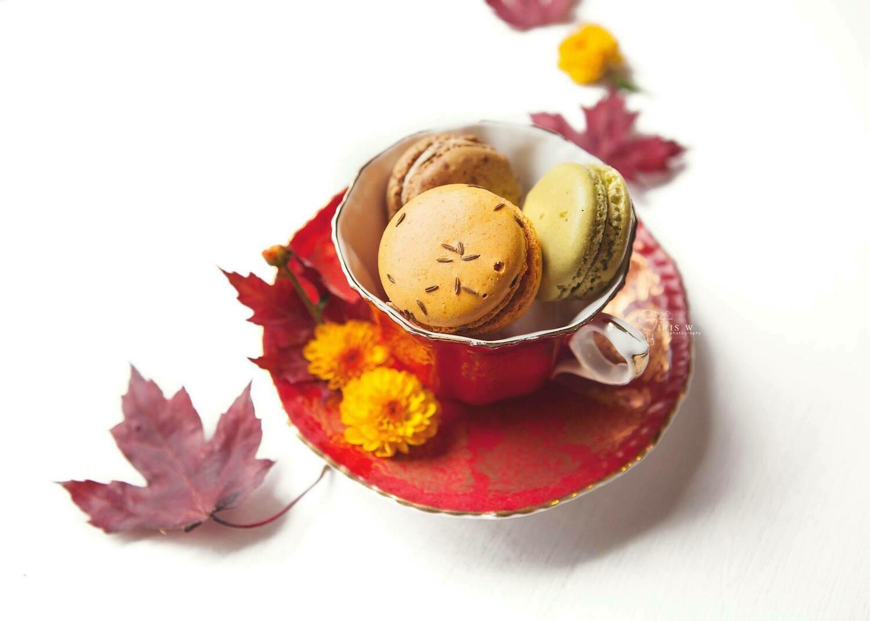 5 Gourmet Savoury Macarons