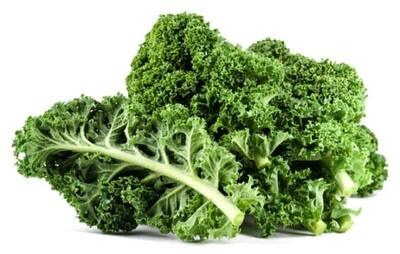 Kale كايل (Piece) - Hydroponic