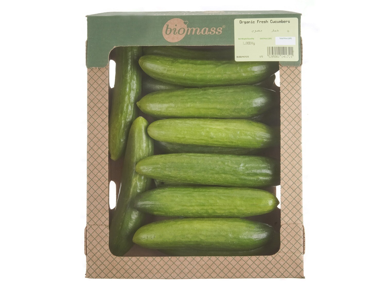 Cucumbers Organic خيار عضوي (Pack) - Biomass