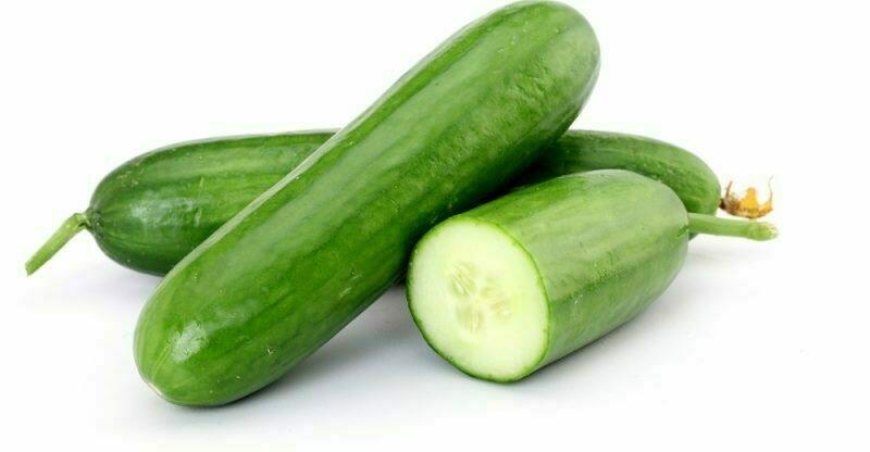 Cucumber خيار (Kg) - The Green Van Permaculture