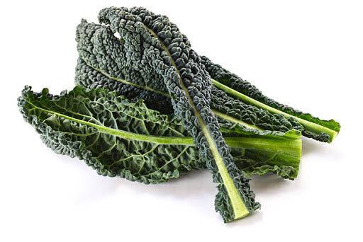 Kale كايل (Bunch) - The Green Van Permaculture