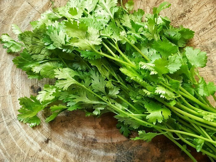 Coriander كزبرة (Bunch) - Our Selection