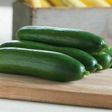 Cucumber خيار (Kg) - Our Selection