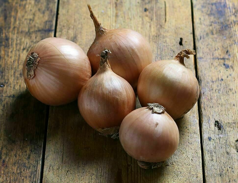 Onion Brown بصل بني (Kg) - Our Selection