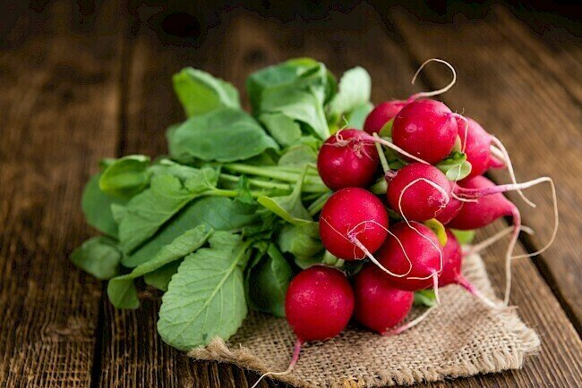 Radish فجل (Bunch) - Our Selection