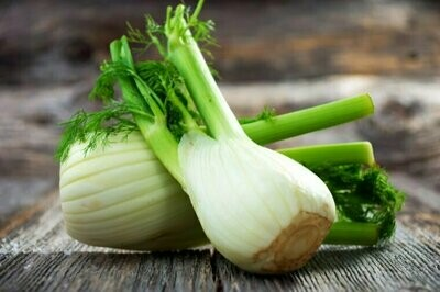 Fennel شمر (Kg) - Our Selection