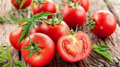 Tomato بندورة (Kg) - Our Selection