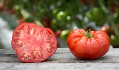 Tomato Jabali بندورة جبلية (Kg) - Our Selection