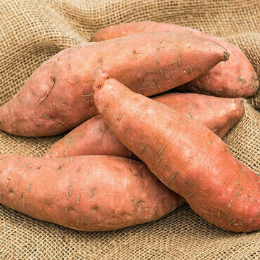Potato Sweet بطاطا حلوة (Kg) - Our Selection