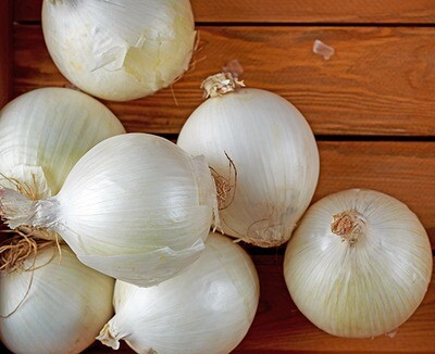 Onion white بصل أبيض (Kg) - Our Selection