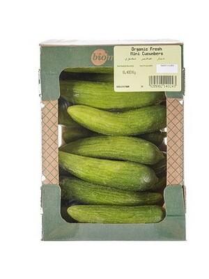 Cucumbers Organic Mini خيار صغير عضوي (Pack) - Biomass