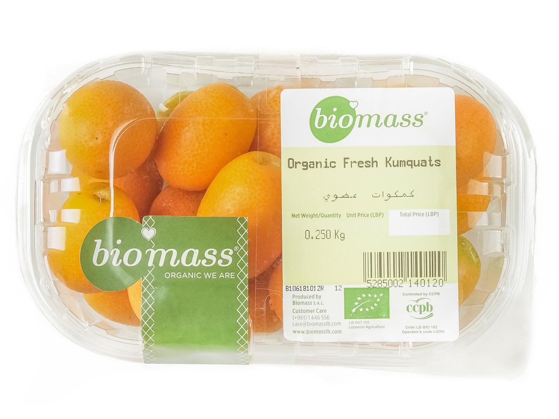 Kumquats Organic كمكوات عضوي (Box) - Biomass