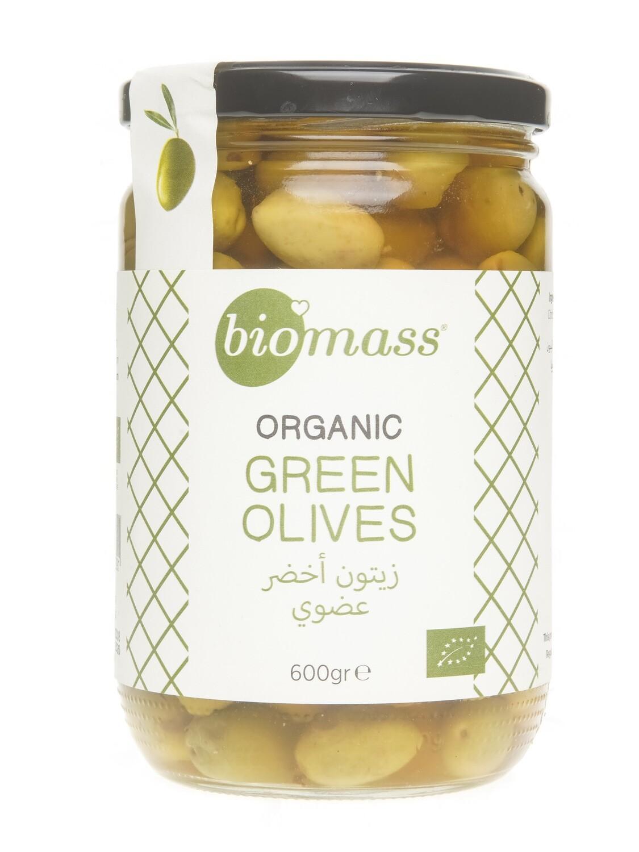 Olives Green Organic زيتون اخضر عضوي (Jar) - Biomass