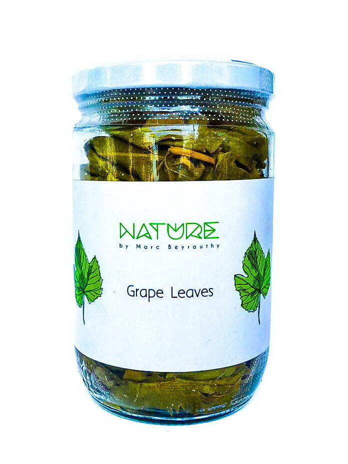 Grapes Leaves أوراق العنب كبير (Jar) - Nature by Marc Beyrouthy