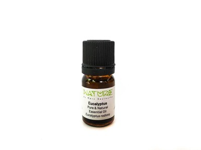 Essential Oils Eucalyptus radiata (Bottle) - Nature by Marc Beyrouthy