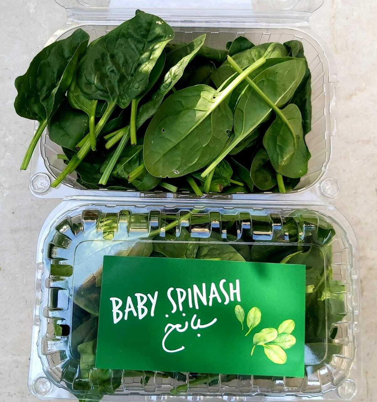 Spinach Baby سبانخ (Box) - Les Reserves du Grenier