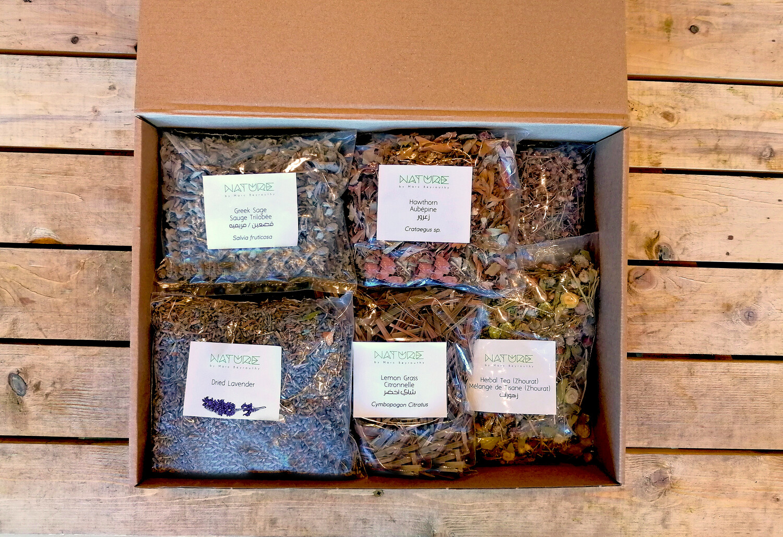 Teta's Closet Tisane Kit (Box) - Nature by Marc Beyrouthy