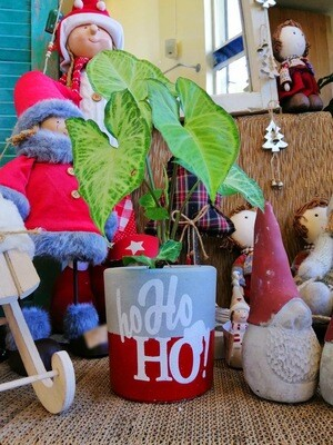 Concrete Pot - Ho Ho Ho! (Piece) - Coup de Glue