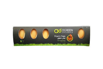 Chicken Eggs Organic بيض الدجاج (Box) - Agreen Organics