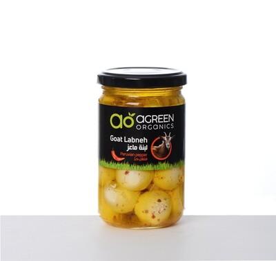 Goat Labneh Balls Organic Spicy كرات الماعز لبنة (Jar) - Agreen Organics