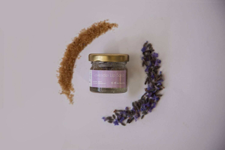 Lip Scrubs Lavender بلسم الشفاه (Jar) - Oleaf