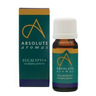 Essential Oils Eucalyptus 10ml (Bottle) - Absolute Aromas