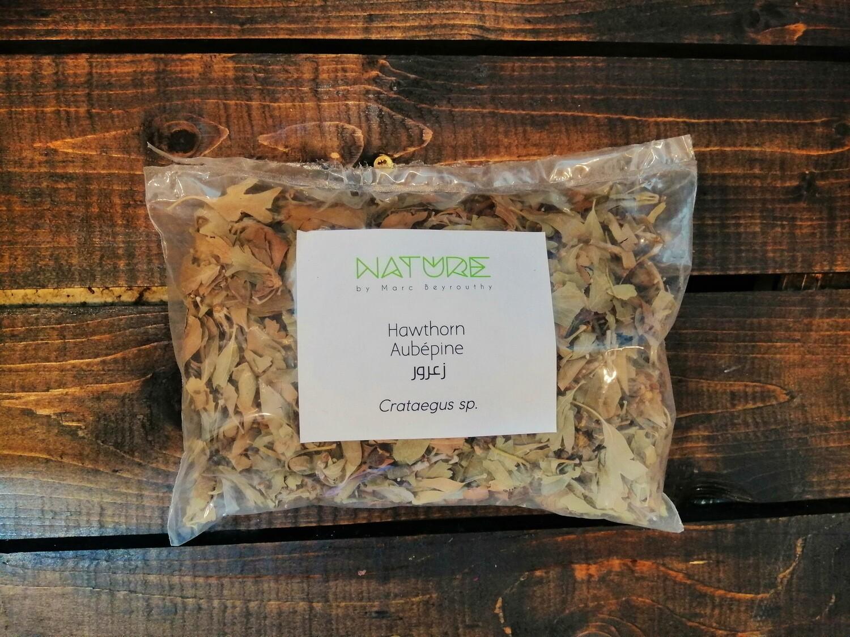 Hawthorn Leaves (Crataegus monogyna) (Bag) - Nature by Marc Beyrouthy