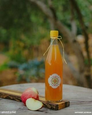 Vinegar Apple خل التفاح (Bottle) - Namliyet Setti