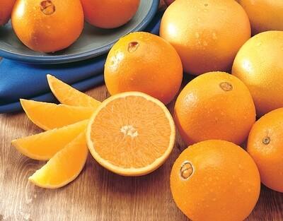 Orange Navel / Abou Sorra ليمون أبو صرة عضوي (Bag) - Our Selection