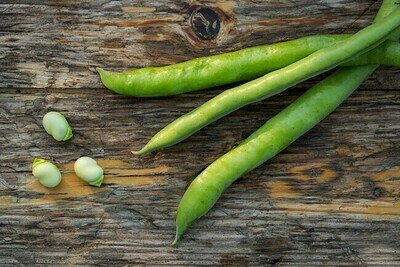 Fava beans فول (Kg) - Our Selection