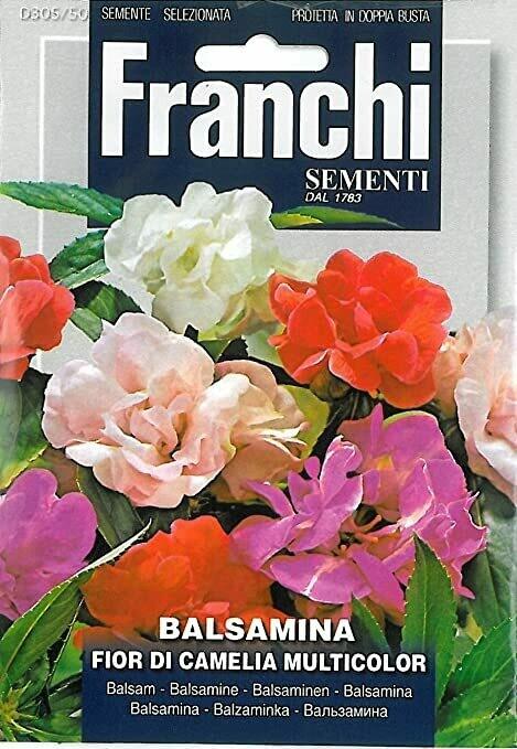 Impatiens balsamina (Bag) - Franchi Sementi