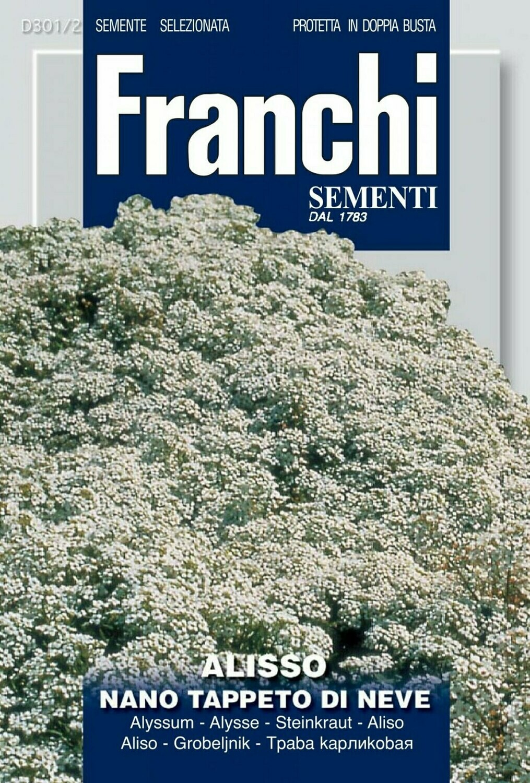 Sweet Alyssum (Alyssum maritimum) (Bag) - Franchi Sementi